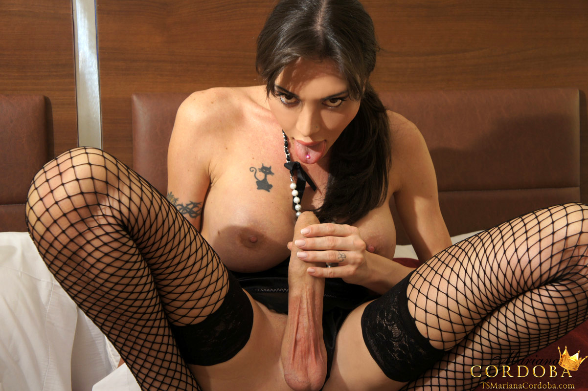 A Provocative Brunette Transsexual In Fishnets And Panties Fingeri