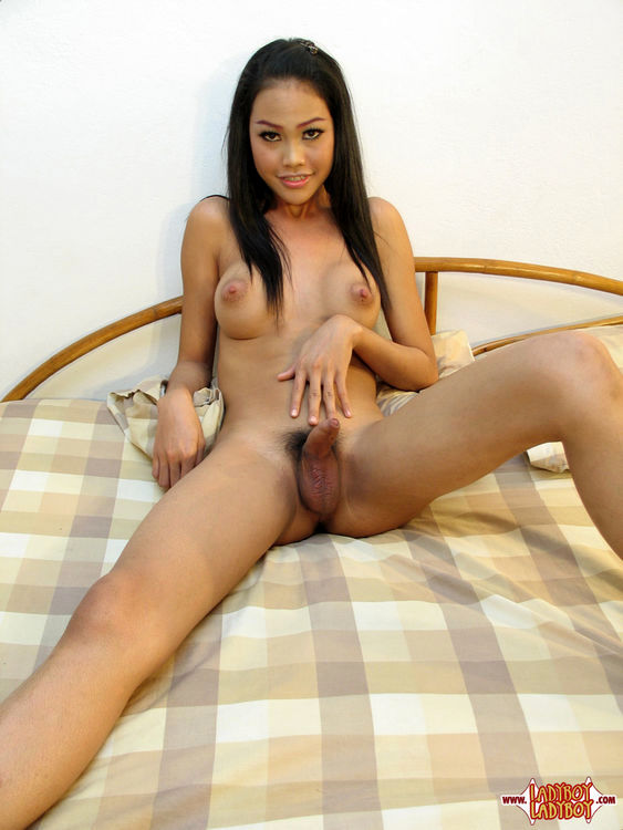 Cute, Girls Asian T-Girl With Rock Raw Penis And Spread Ass.