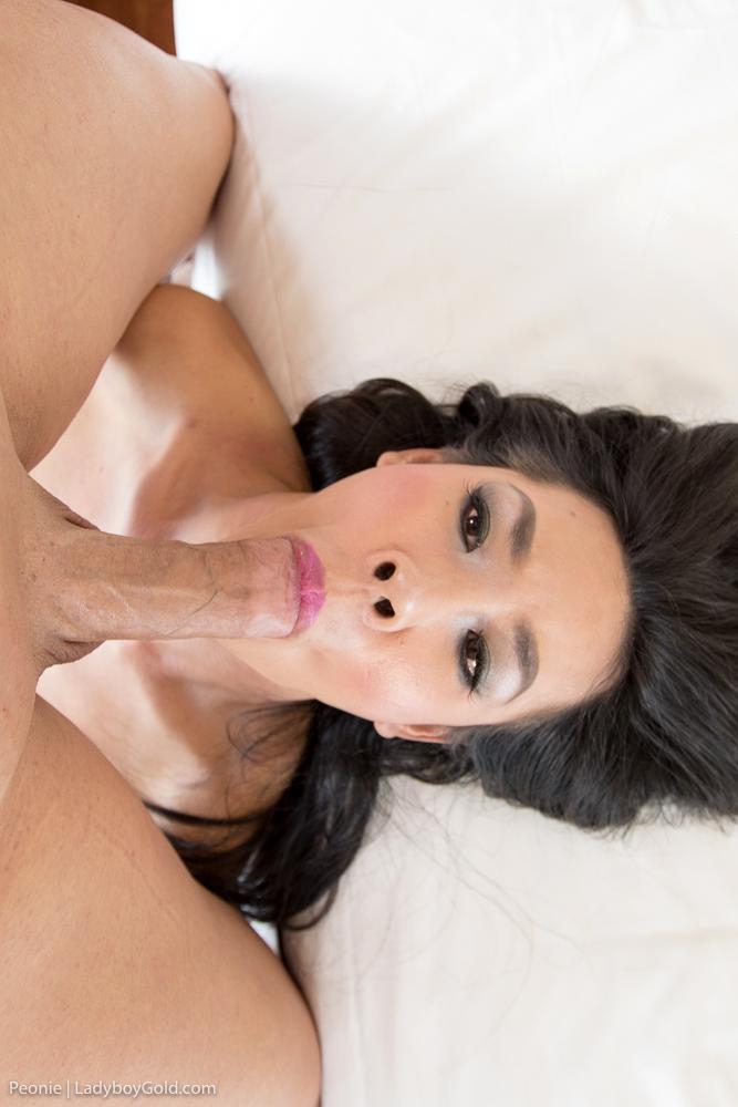 Penis Stuffed Beauty