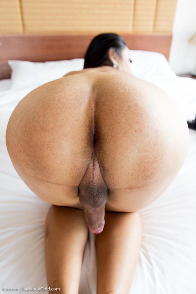 Sheer Seduction Bare Back