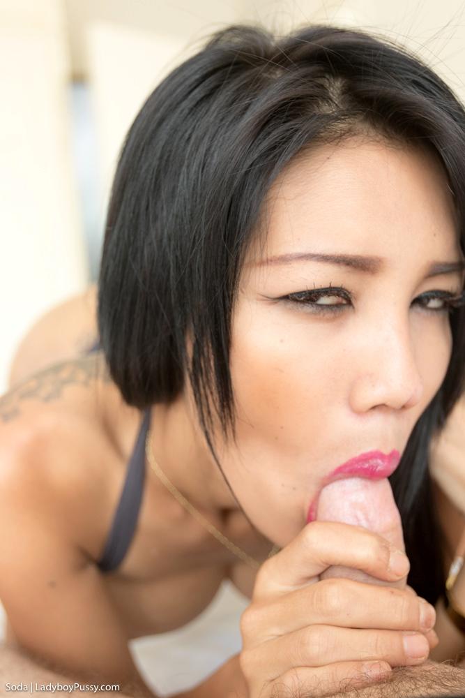 Slutwear Sex Bomb Cream Pie