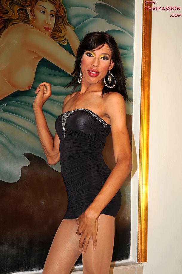 Transexual Passion Set 183