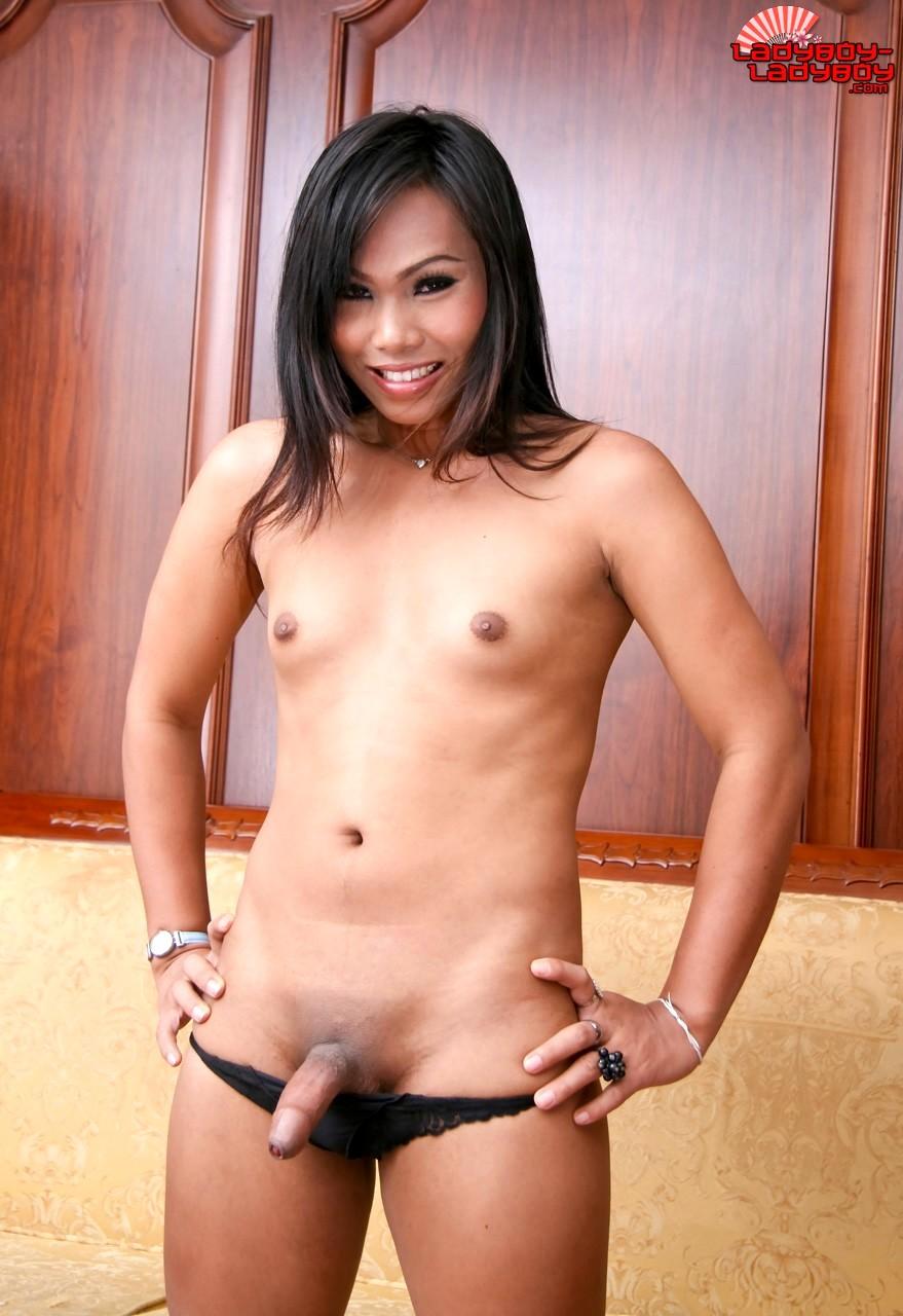 Transexual TGirl Set 1427